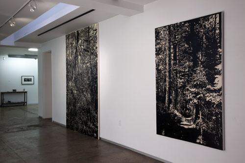 David Conn at Artspace 111